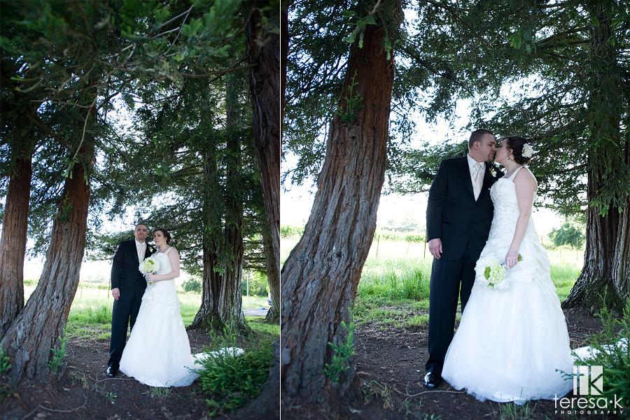 Northern California Vineyard wedding inspiration, Teresa K photography