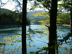Valiug (Honey_in_the_Sunshine) Tags: lac romania valiug