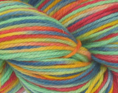 Sunset in Venice on Rambouillet Worsted - 4 oz (WW)