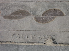 Fault line - by Lisa Andres