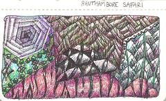 Ranthambore Safari (molossus, who says Life Imitates Doodles) Tags: journal zentangle zendoodle zentangleinspiredart moleskine04