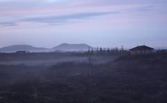 Evening fog (Gurn orsteins.) Tags: fog lava evening iceland craters crater oka vanes