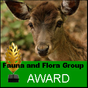 Fauna and Flora Group Award 2