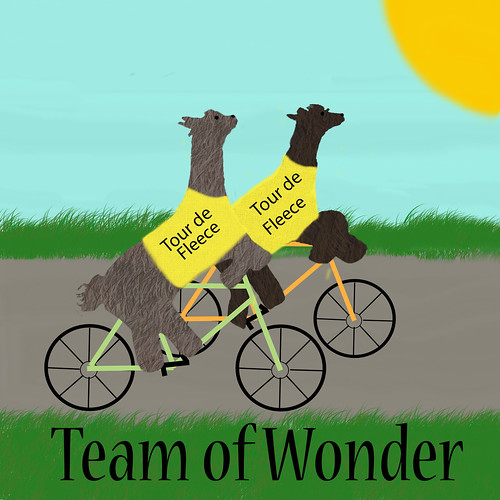 Team of Wonder Tour de Fleece Logo