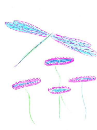 dragonfly_lilies