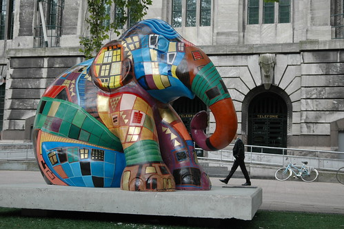 Elephant Parade Rotterdam, Antwerp and Amsterdam - a gallery on Flickr