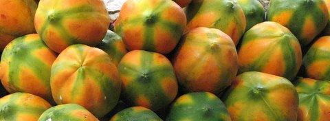 papaya composition