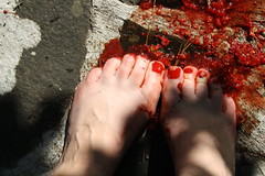 outtake (day two) (wherethereishope) Tags: light red feet rock toes berries shadows skin nailpolish scrunch outtake