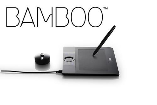 bamboo02