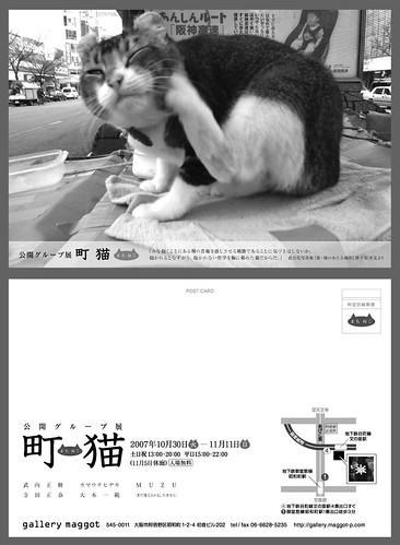 グループ展 町猫