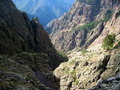 Vire du Tafonatu côté Silvastriccia : le ravin descendant de la crête de Ghjarghjole