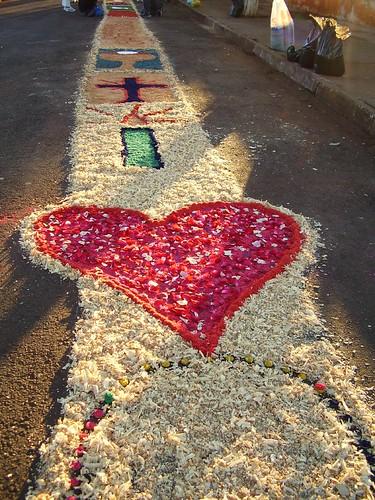 Heart in sunlight