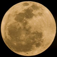 Geometria ou lunimetria? (Luiz C. Salama) Tags: sky moon interestingness nightshot c explorer cu explore noturna lua astronomy 500 destaque astronomia luiz interessantes salama ocioso flickrtop500 drocio luizsalama salamaluiz metareplyrecover2allsearchprigoogleover