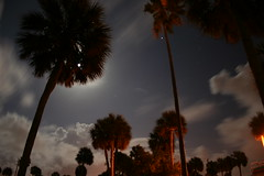 Night Clouds (jkc photos) Tags: street light usa cloud moon blur tree night lens photo amazing cool haze long exposure flickr glow shot nightshot unitedstates angle time florida cloudy or united wide halo palm series normal states cooler 1855 hazy e20ci