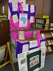 durban city library - book display