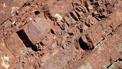 1b. Radiolarian chert layers