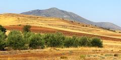My favourite 2 (aGinger) Tags: road trip mountains view casio greece landview exz110 landscapetruck