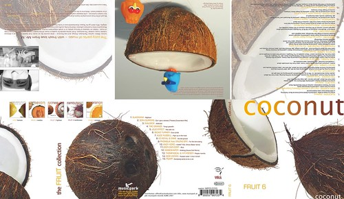 Coconut Fruit 6