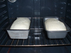 Day 5: Baking bread