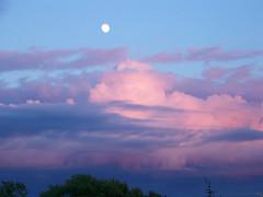 Sunset, Moonrise     100_5685a (monophysite57-zzz) Tags: pink blue sunset sky clouds moonrise blueribbonwinner