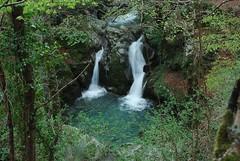 Cascata ferdinandea serre (gurca) Tags: cascate torrente fiumi torrenticalabresi pozzedacqua
