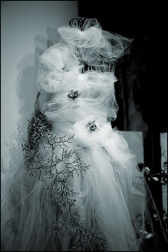 oh, forget the wedding dress, just wrap me in several yards of gauze and a shrubbery