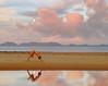 moon's piramid (AraiGodai) Tags: moon beach yoga sunrise interestingness interesting olympus explore krabi arai southernthailand explorefrontpage araigordai exploretopten gordai raigordai araigodai