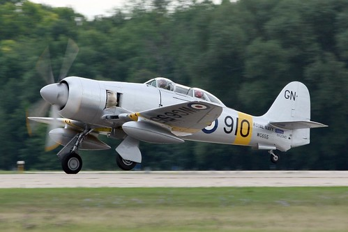 Warbird picture - HAWKER SEA FURY T.20 WG655