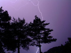 Lightning Strike (jo92photos) Tags: trees storm weather night action flash nightime thunderstorm lightening thunder decisivemoment ©allrightsreserved anawesomeshot aplusphoto aplusphoto0 jo92photos