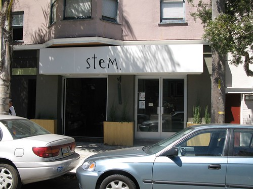 Stem - a boutique on 18th in the Mission