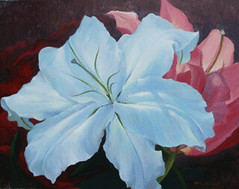 White Lily, by Suppharat Watcharin, 2007, oil on canvas, 70X90cm
