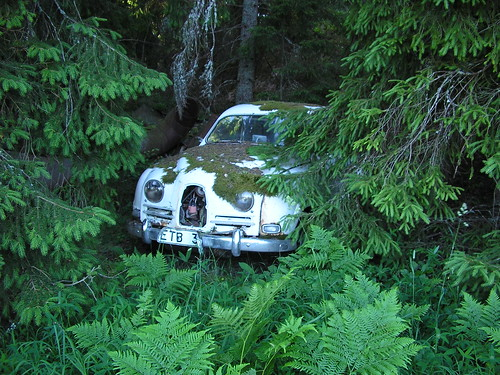 Skogsvrak An old twostroke SAAB 96 sleeping in the forest