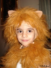 cute lion (Shaima82_4) Tags: baby cute childhood nice scary child dress lion