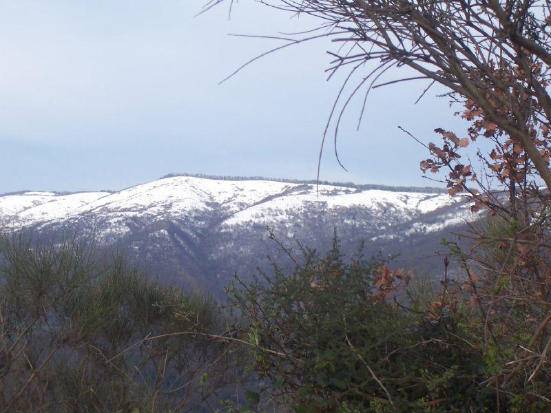 Immagine - Montagne - Spazzavento - Prato