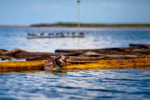 20100617-tedx-oil-spill-0658