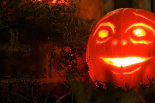 pumpkins 5.jpg