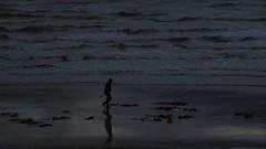 Digging the beach (Ed Melia) Tags: sea beach night bucket brighton waves alone digging brightonbeach bait spade diggingforbait tpalonely