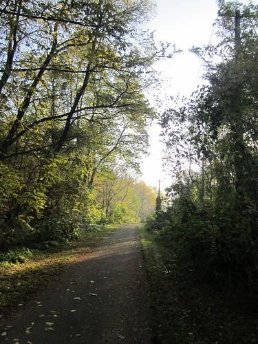 Balaton cycle route