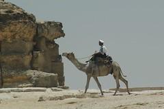 DSC_0585 (bruce_geisert) Tags: africa northafrica egypt cairo geisert brucegeisert