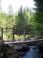 Rännö bridge over a waterfall (Lila Rache) Tags: bridge trees green water wooden rocks stream sweden matfors rännö rännöbäcken