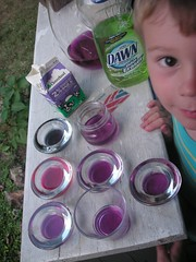 red cabbage pH experiment