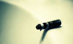 Cigarette's Edge... (Light ||) Tags: light cigarette smoke butt smoking cigarettes fag cigarettebutt cigarettesmoke instantfave theuncommonspace