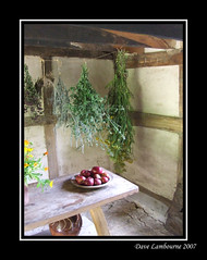 Old English (Bracknell Dave) Tags: old house kitchen fruit table herbs tudor novideo s5600