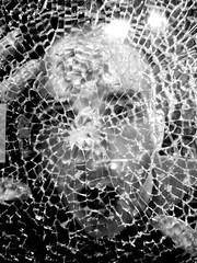 (^Suleika^) Tags: boy blackandwhite man male glass face uomo viso biancoenero vetro ragazzo ragnatela