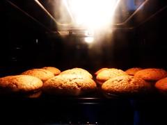 nuss-nougat-muffins