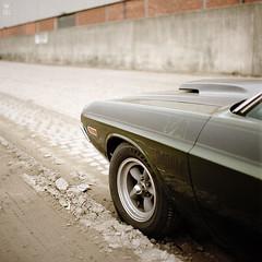 T/A (romanraetzke) Tags: auto green car analog colours kodak hamburg rad tire chrome bronica dodge 1970 grün ta portra v8 challenger chrom musclecar farben 2010 reifen 160nc felge s2a rechtsistgas
