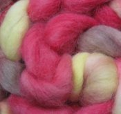 """4.7 oz Alpaca Roving """"Stanley"""" 3 Day Auction"""