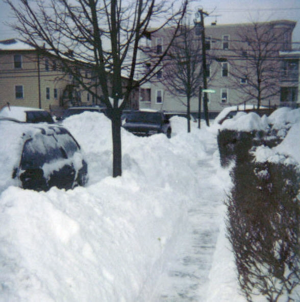 Mayfield Street, Dorchester, February 2003