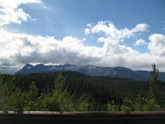 IMG_2553 (alejandi) Tags: rockies roadtrip icefieldsparkway