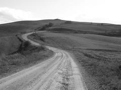 Viaggiare, solo viaggiare. (*Eleonora*) Tags: siena toscana valdorcia volare viaggiare campagnasenese stradasperdutaincuivorreiperdermi